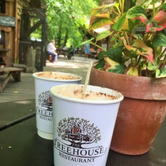 https://www.alnwickgarden.com/the-treehouse/welcome-to-the-treehouse/