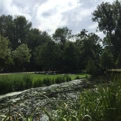 https://www.amsterdam.info/parks/vondelpark/